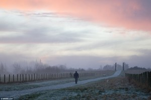 3BACDBC600000578-4070206-Going_for_a_stroll_A_foggy_start_this_morning_in_Cobham_Kent_as_-a-15_1482949022085